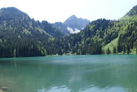 Lac des Plagnes bord du lac