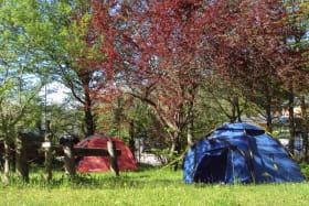 Les tentes au camping