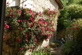 Saint Sorlin en Bugey - Village de roses