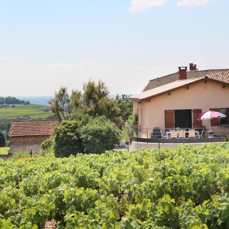 Gîte du Domaine de Barvy à Odenas (Rhône- Beaujolais) : environnement