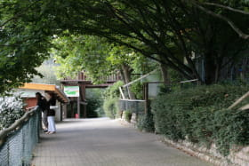 Espace Zoologique de Saint-Martin-la-Plaine