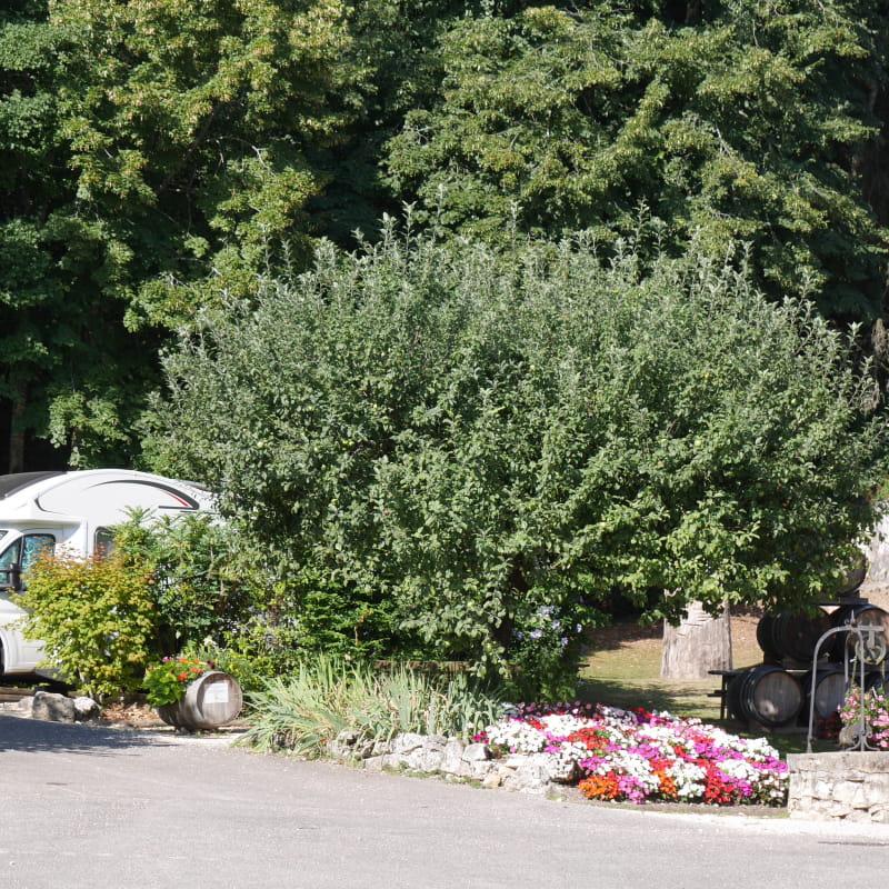 Aire d'accueil pour camping-cars Caveau Bugiste Vongnes
