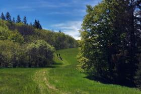 Sentier du Maquis en direction de la ferme de Morez