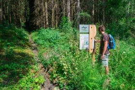 Géosite de la forêt ivre à Vailly