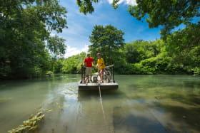 Promenade en barque dans la réserve naturelle de l'Île de la Platière