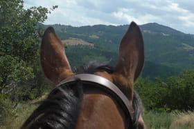 Randonnée avec les Ecuries de Longchamp