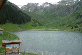 Lac de gers été
