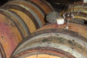 Vin - SCEA de Montgacon - Luzillat