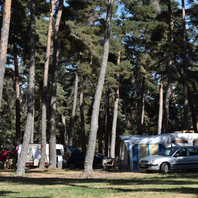 Le Petit Bois camping