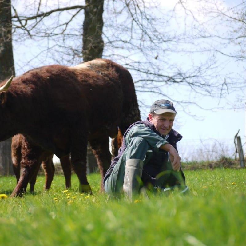 Yvan Vial - éleveur de bovins salers