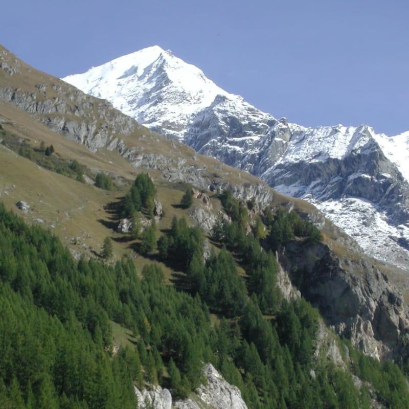 Le Mont-Pourri avec ses 3779 mètres