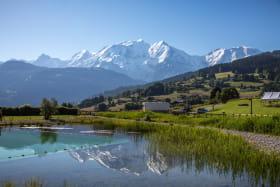 Plan d'eau biotope de Combloux devant le Mont-Blanc