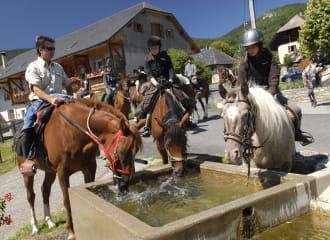 Horse riding and pony trekking