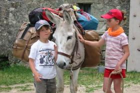 Balade avec un âne à la journée entre Cévennes et montagne ardéchoise