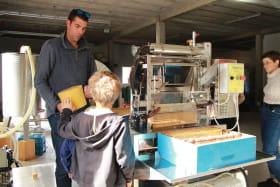 Visite fabrication du miel