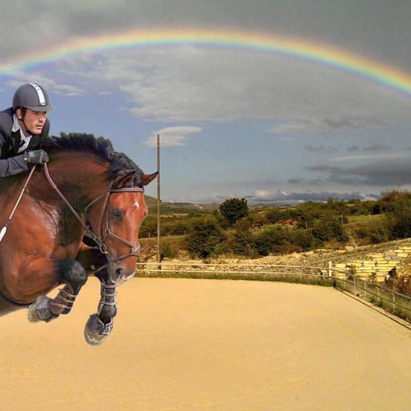 Cours d'équitation avec Alba Équitation