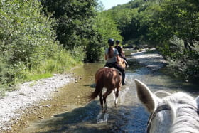 Equitation Les Crinières de Roche Colombe - Ferme équestre