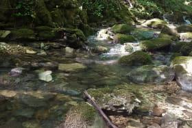 ruisseau randonnée de la cascade de Luizet