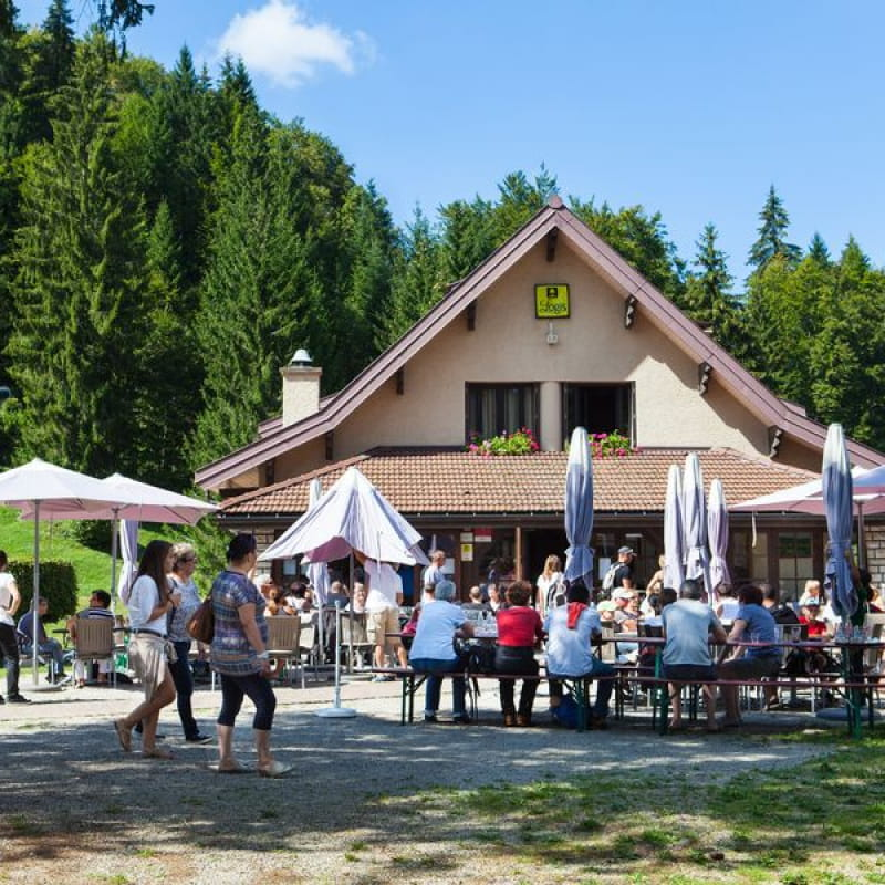 Bar de l'Auberge du Lac Genin