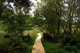 Sentier historique et botanique -