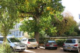 Villa Coustet Parking