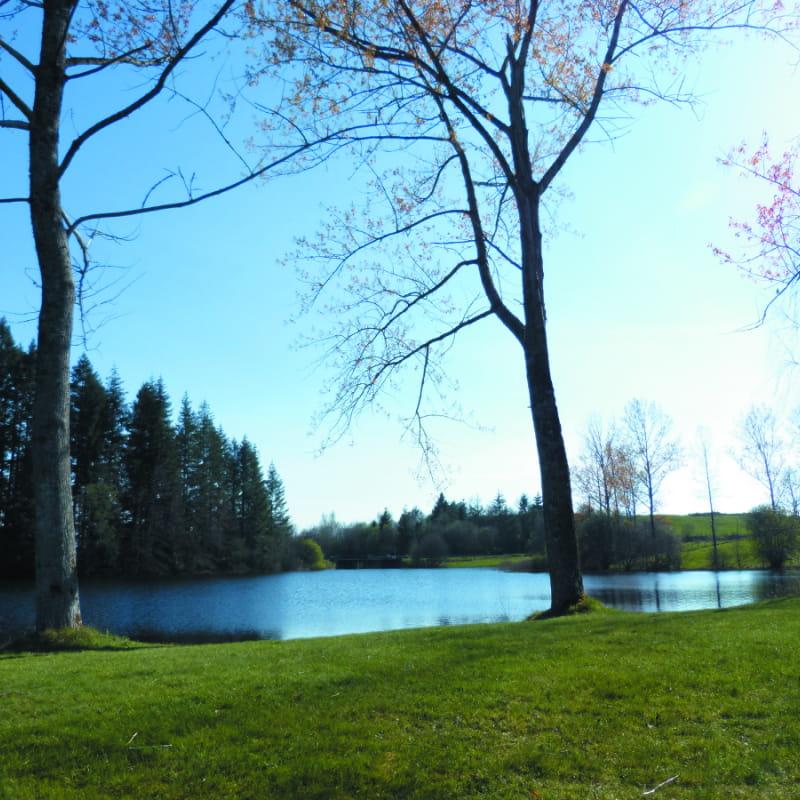 Site de pêche de l'Etang de La Crégut dit l'Ilet
