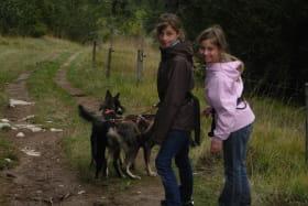 Cani-rando avec Kiska