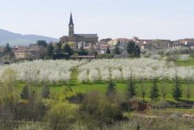 Chambres d'Hôtes des 2 Chênes à Bessenay dans le Lyonnais - Rhône : Vue sur le village de Bessenay et les cerisiers en fleurs.