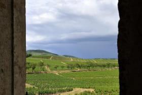 Gîte de groupe Le Vigneron 15 personnes - Château des Tours à St Etienne-La-Varenne (Rhône - Beaujolais) : vue sur le vignoble.