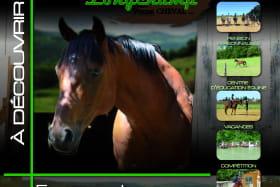 Dépliant des Ecuries de Longchamp