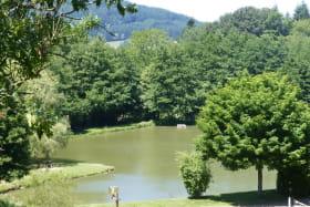 Gîte du Plan d'eau d'Azole (N° 1287) à Propières (Rhône - Monts du Beaujolais): le plan d'eau.