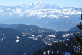 Les Terrasses du Mont Blanc - 55 m² - n°457