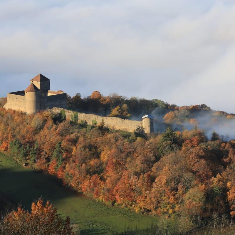 château des Allymes vu du ciel