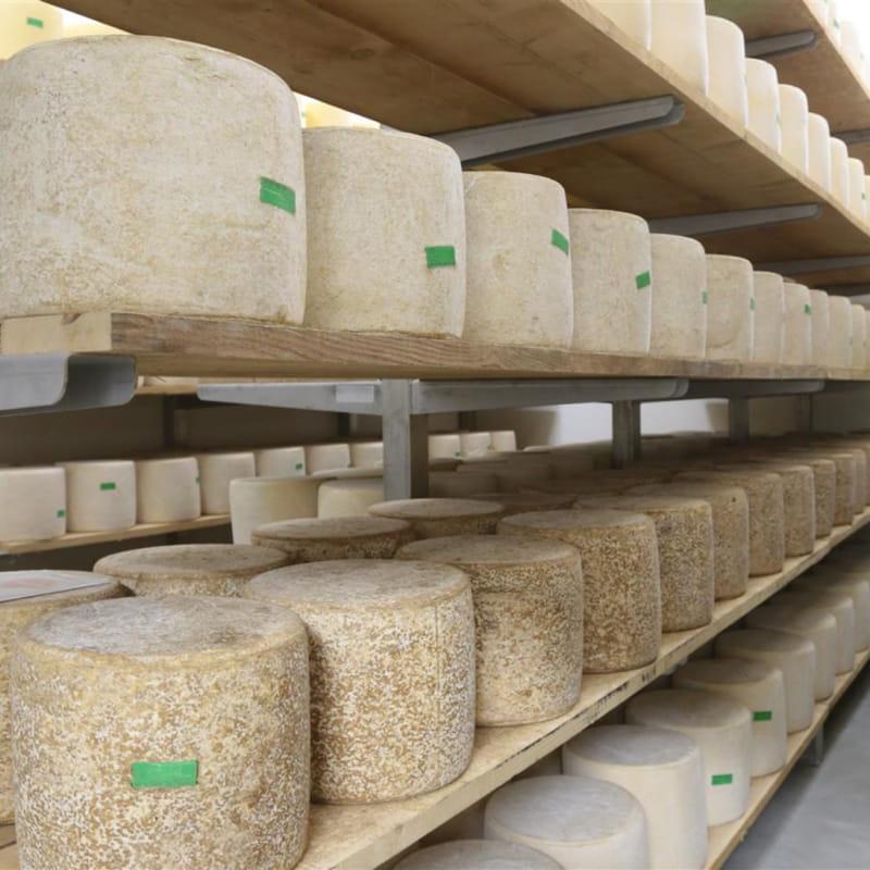 Coopérative laitière de St-Bonnet-de-Salers