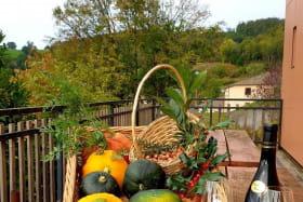 Gîte (12 personnes) à Cenves en Haut Beaujolais - Rhône : la terrasse.