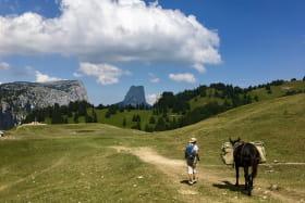 Alex Servigne, accompagnateur en montagne & ânier