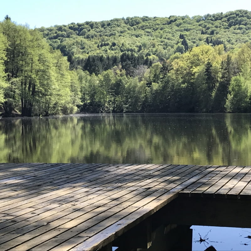 Étang privé de pêche